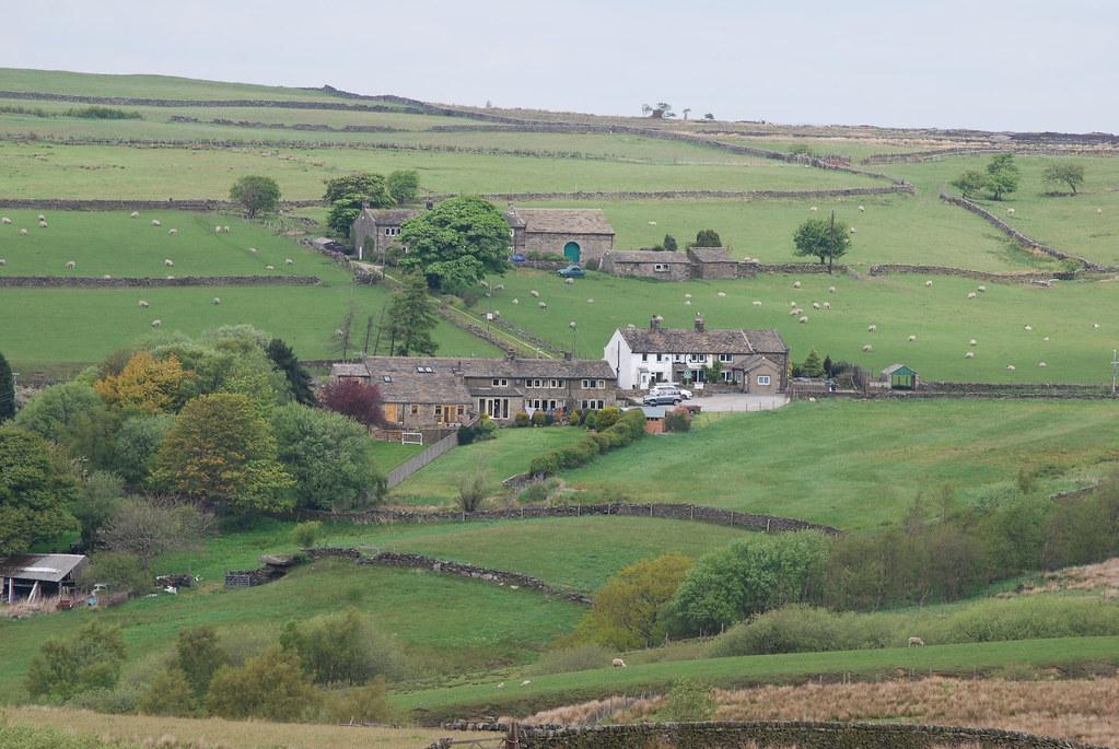 Green Yorkshire hillside