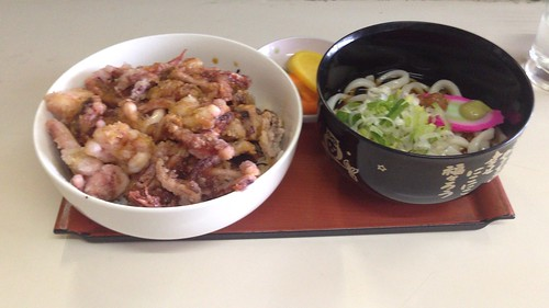 hokkaido-asahikawa-hanachan-geso-don-with-udon