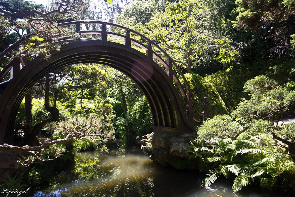 Japanese Tea Garden-3.jpg