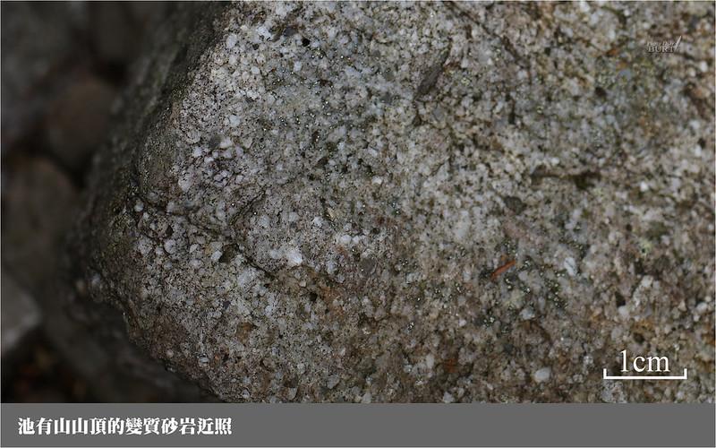 池有山山頂的變質砂岩近照