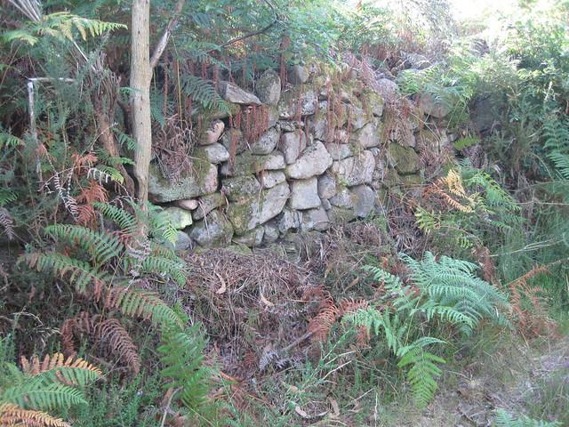 Muro de Castro Lupario en la ruta del Castro Lupario y río Sar