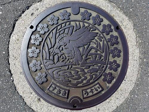 Susaki Kochi, manhole cover 2 (高知県須崎市のマンホール2)