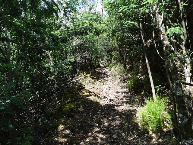 Sendero en el PR-G 193 Ruta do Val de Quiroga