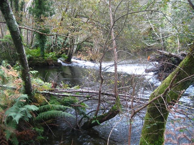 Río Mandeo en Aranga