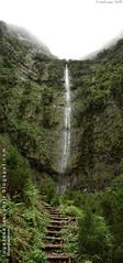 El final del camino (Santana, Madeira)