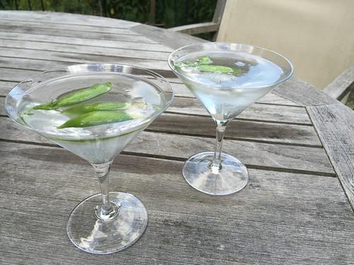 snap pea martinis IMG_6579