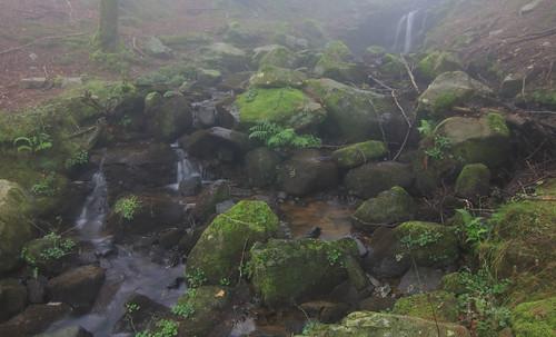 Parque Natural de #Gorbeia #Orozko #DePaseoConLarri #Flickr - -650