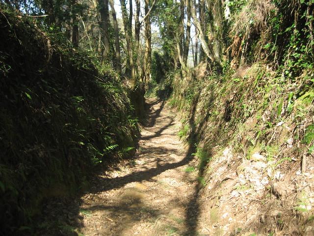 Camino en la PR-G 142 Ruta das Férvedas