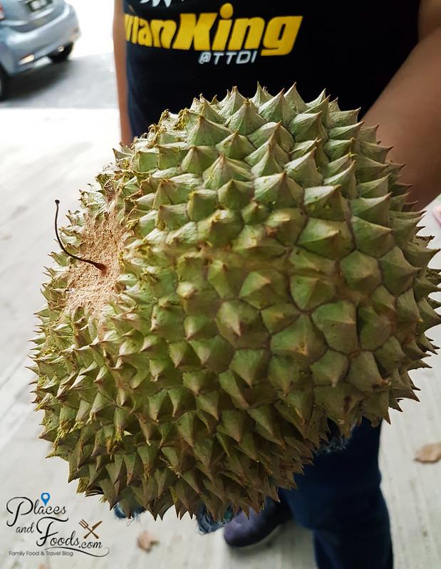 black thorn durian malaysia thorn