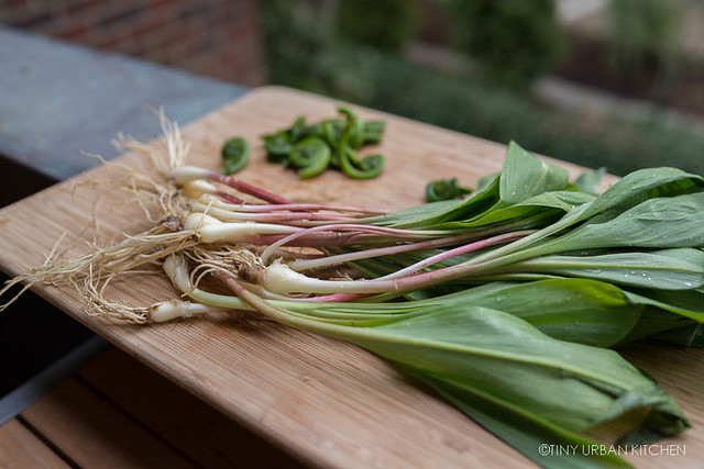 Ramps Fiddleheads