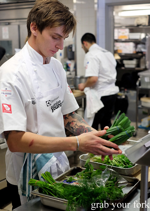 Mal Meiers from Fatto Bar & Cantina selecting herbs at the Appetite for Excellence Young Chef of the Year 2016 final cook off