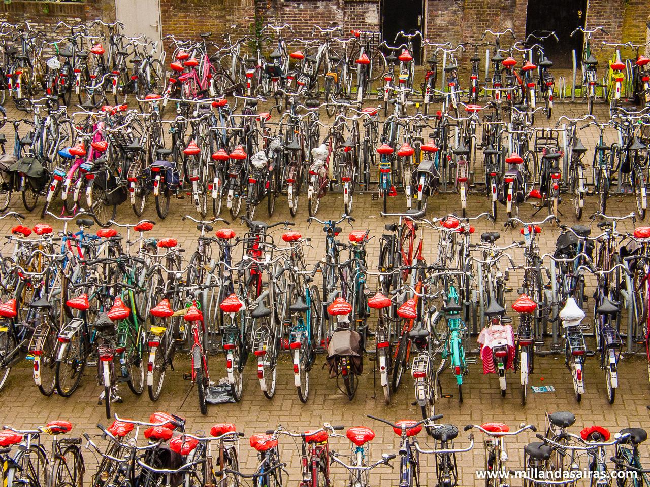 Aparcamiento de bicicletas en el centro de Arnhem