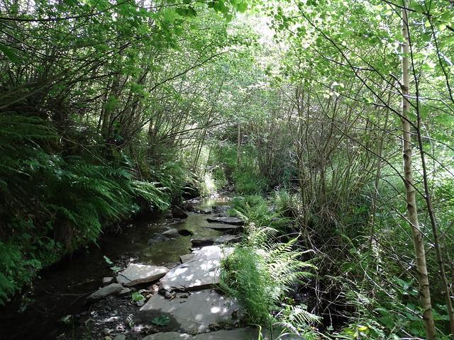 Río en la Ruta da Fervenza de Vieiros