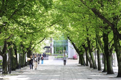 【學長姐帶路】台北醫學大學 醫務管理學系