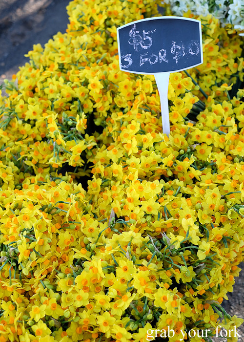 Daffodils at the Canterbury Foodies and Farmers Market, Sydney