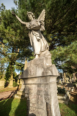 Extravagant Grave