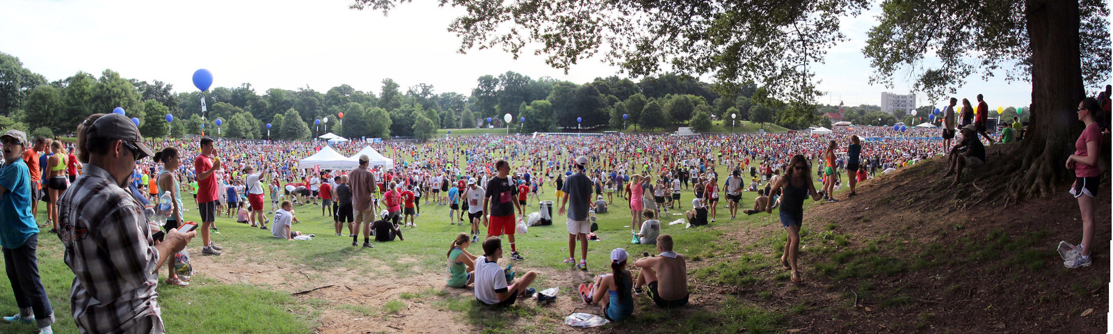 4th of july panorama in the park