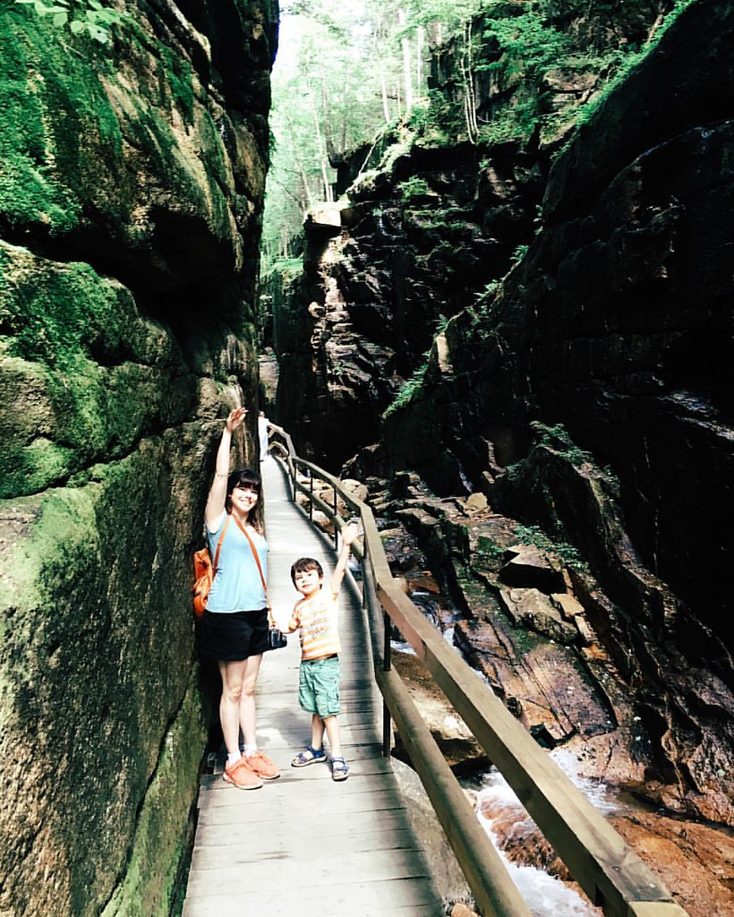 The Flume Gorge is so very tall! #latergram #americathebeautiful #newhampshire