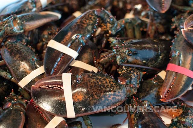 Nova Scotia lobster, downtown Halifax