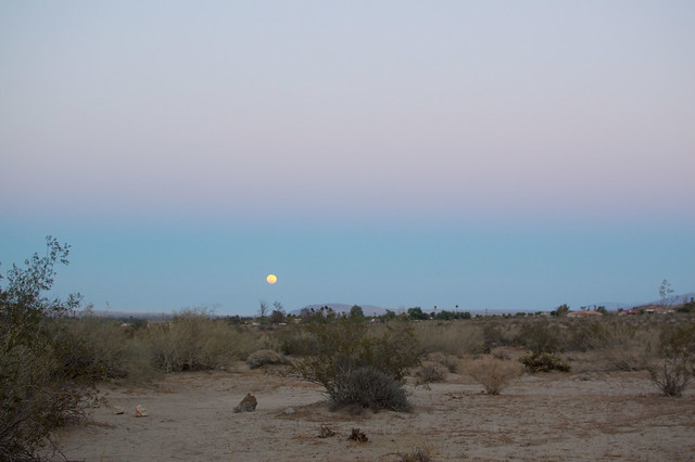 desert moonrise, anza borrego