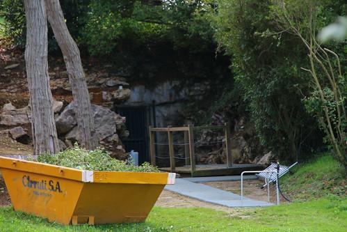Visita al Museo de Altamira