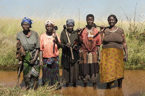 Women clearing canal, Zambia. Photo by Anna Fawcus.