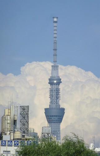 jp16-Tokyo-Ueno-Parc-j7 (9)