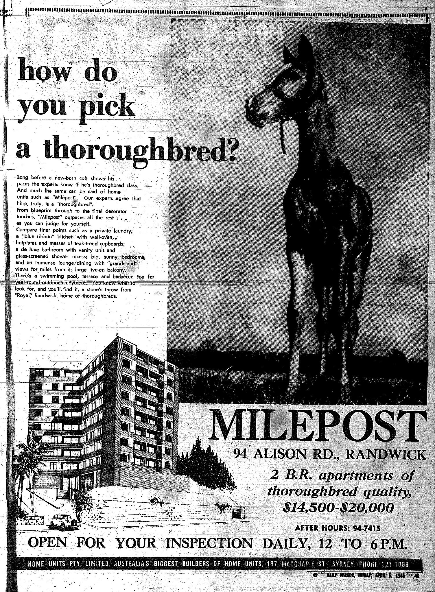 milepost randwick april 5 1968 daily mirror 49