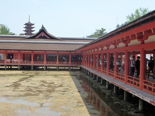 jp16-Myajima-Itsukushima-avant-midi (10)