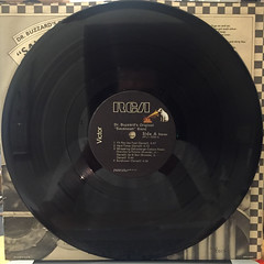 DR. BUZZARD'S ORIGINAL SAVANNAH BAND:S.T.(RECORD SIDE-A)
