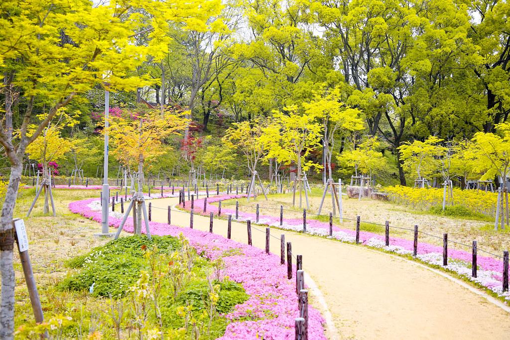 2015 April Kansai 183