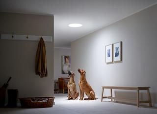 A VELUX fénycsatornával jelentősen csökkenthető a villanyszámla