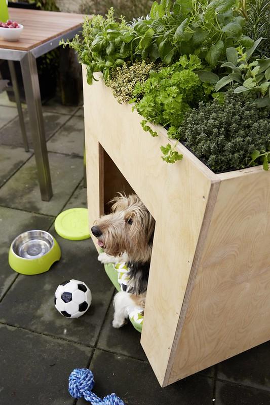 Bosch HG_Doghouse_Close Up 3