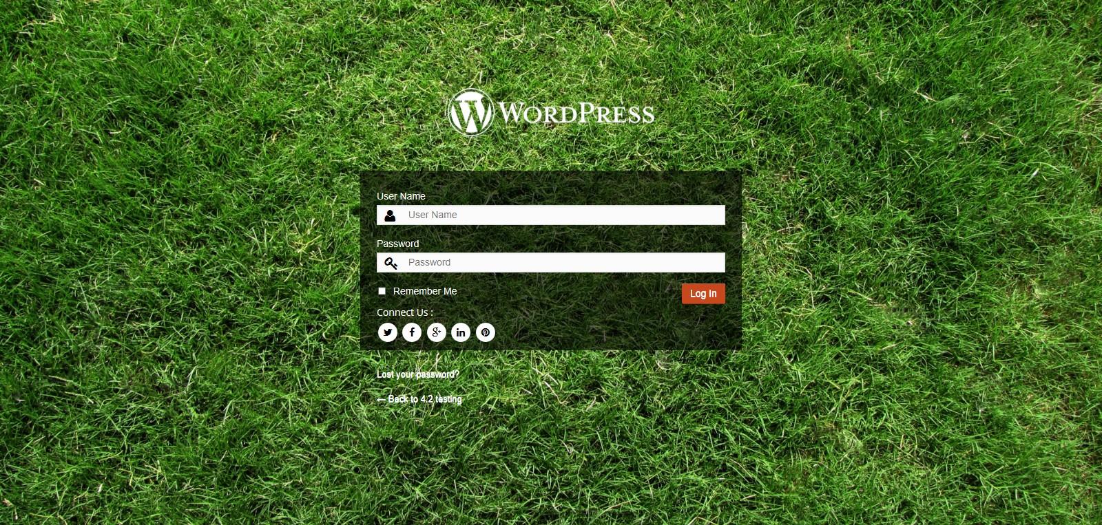 Customize WordPress Login Page