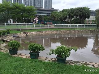 CIRCLEG 遊記 沙田 火炭 彭福公園公園 (20)