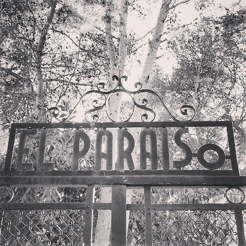 El paraiso | Paradise