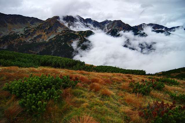 Autumn magic in Western Tatras