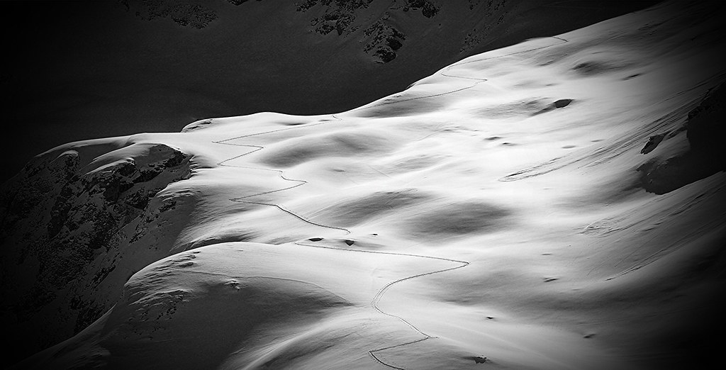 Trace in the snow. Pyrénées.
