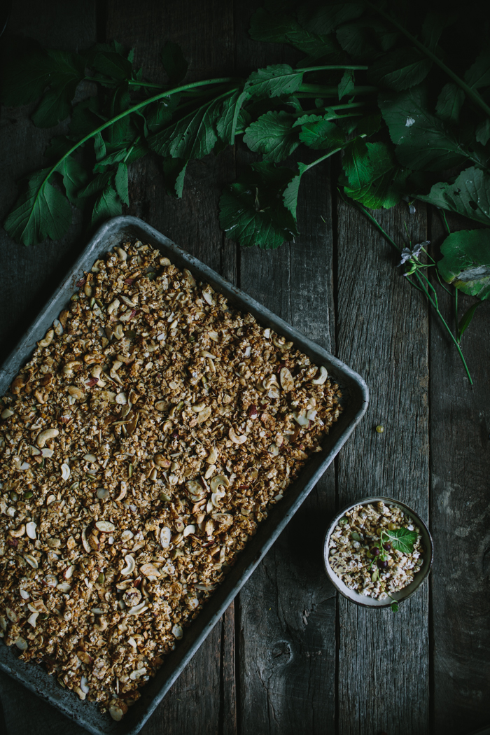 Homemade Vanilla Pepita Granola + A Plantable Book