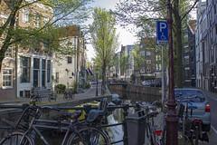 NEDERLAND - Amsterdam 186