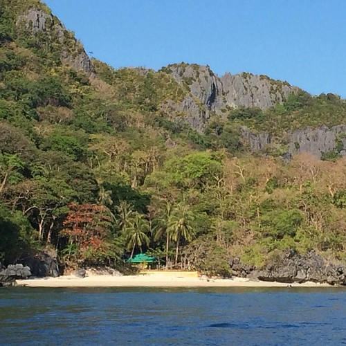 I swam with turtles today. #elnido #palawan #philippines #snorkelling #turtles #heaven #asia