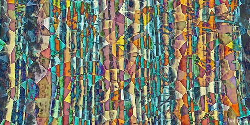 kaleidescope forest