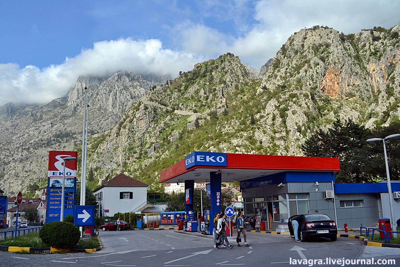 montenegro29