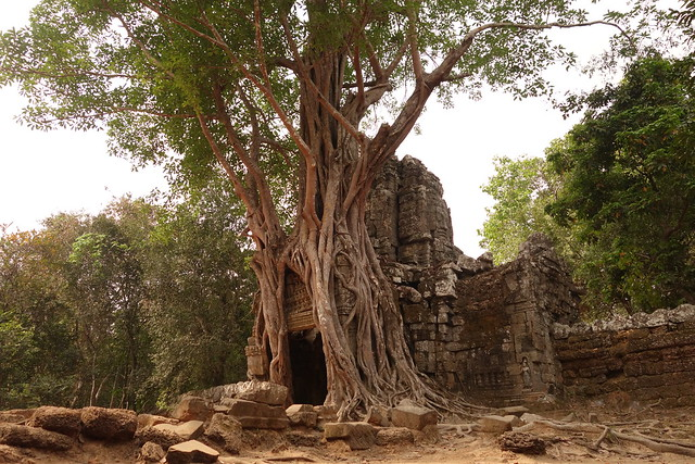 Ta Som / Temples d'Angkor
