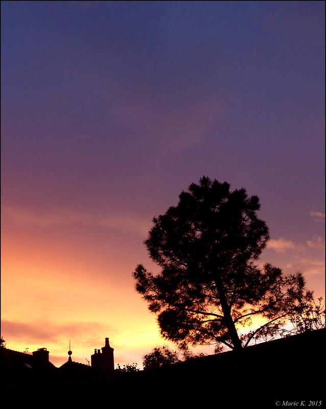 Par dessus les toits, le ciel s'embrase + 1 16787231053_d6400460d6_c