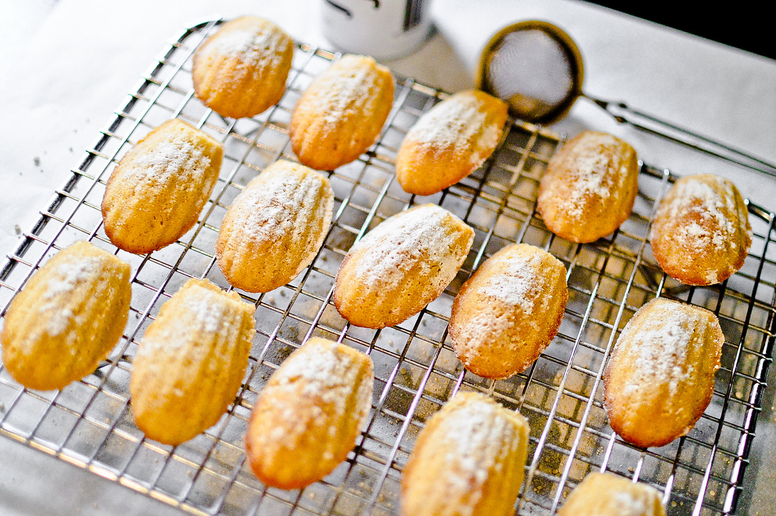 Orange & Vanilla Madeleines