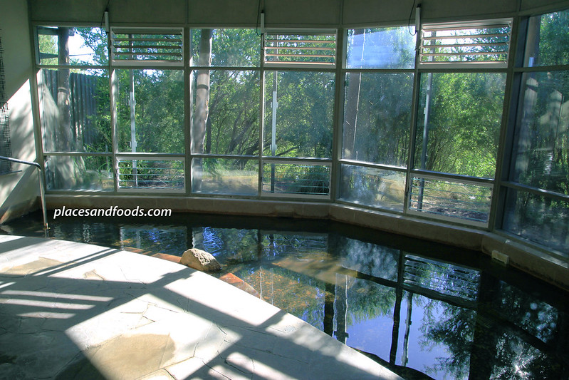 mornington peninsula hot spring indoor pool