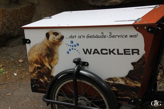 Tierpark Friedrichsfelde 10.05.201566