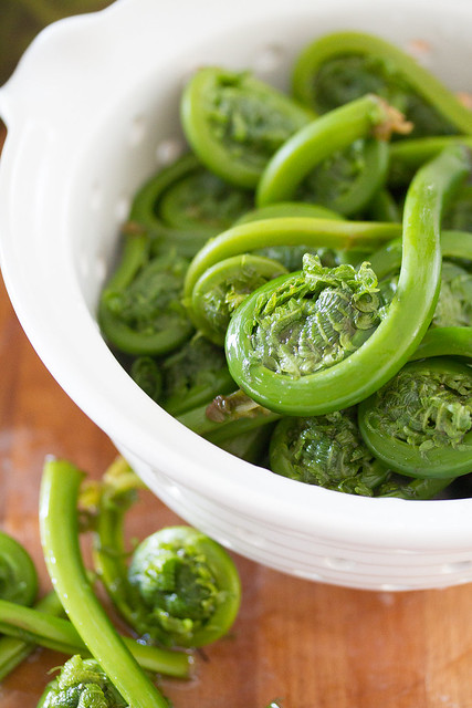 Fresh Fiddleheads