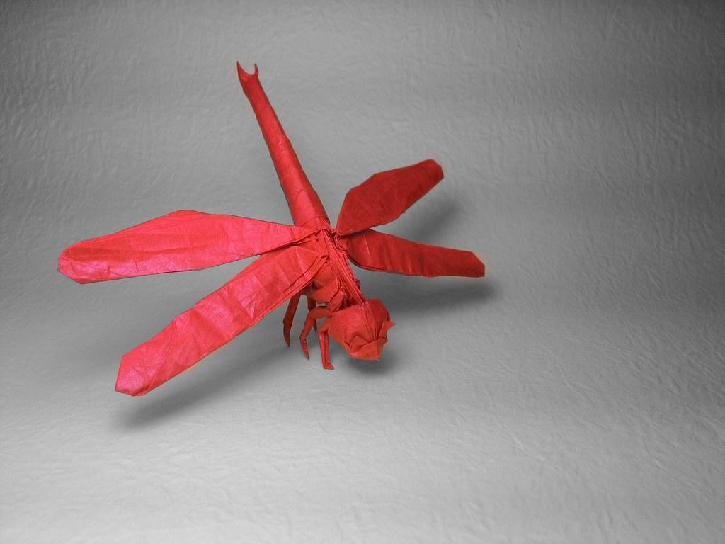 Satoshi Kamiya Dragonfly 1.1b Satoshi Kamiya | by